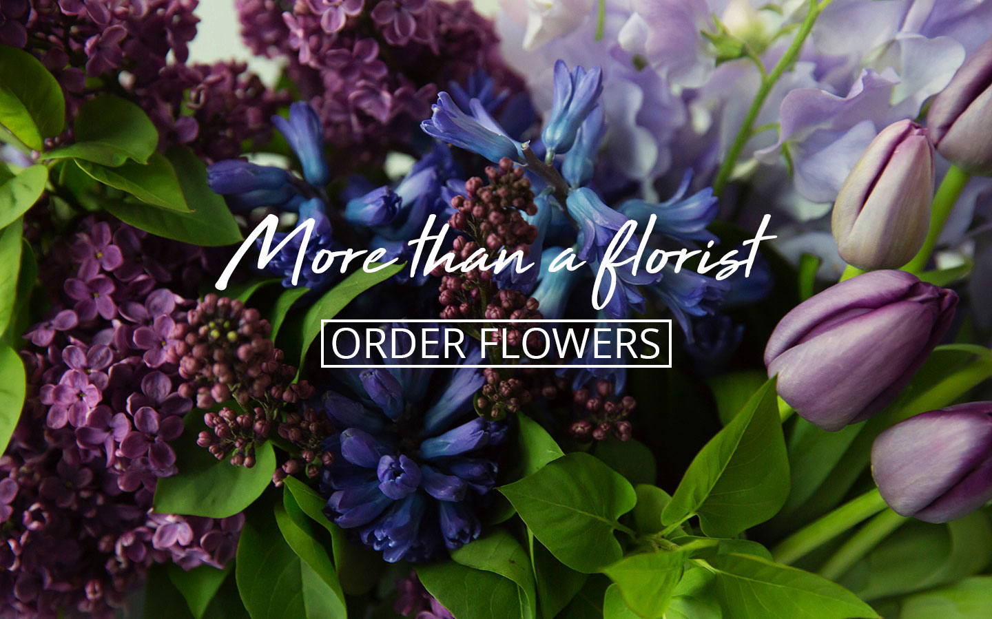 More than a florist