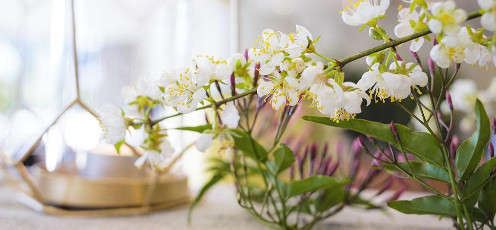 Melbourne Florist Cbd Flower Delivery Melbourne